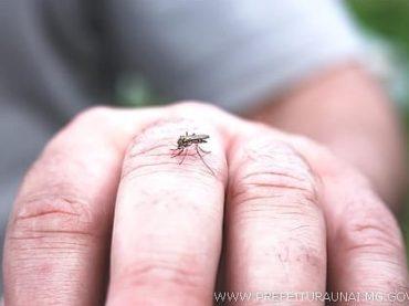 Dengue em Unaí: mais de 3 mil notificações e duas mortes